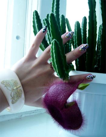 Иероглифы на ногтях