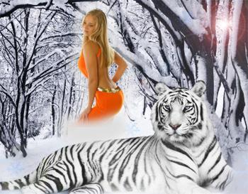 В чём встречать новый год белого тигра