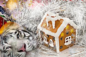 Новогодний интерьер в год Белого тигра