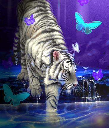 Новый 2010 год белого тигра