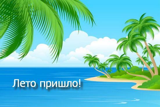 Лето пришло
