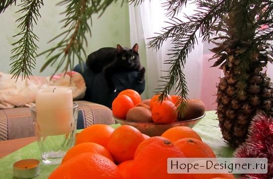 Кот мандарины и ёлка