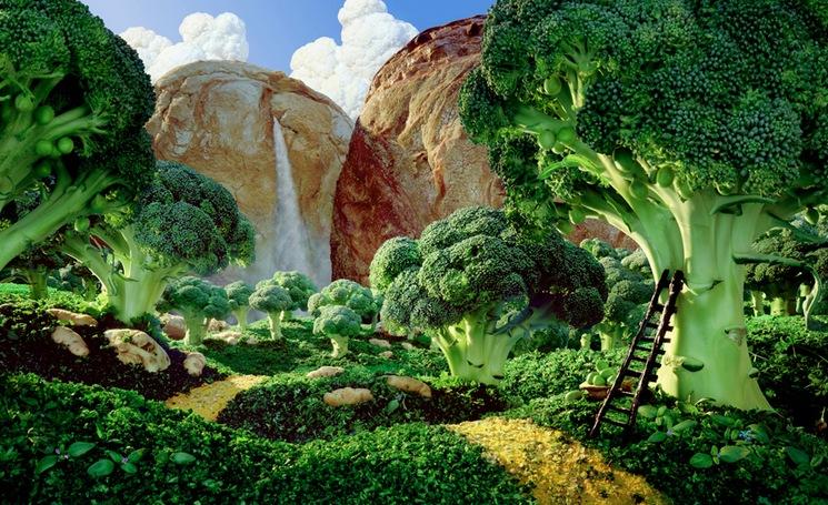 Brocolli-Forest